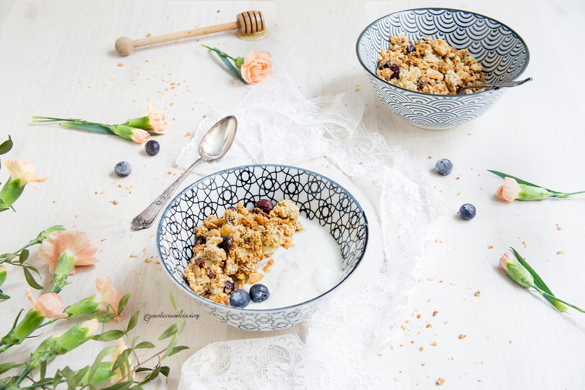 crunchy granola cranberry