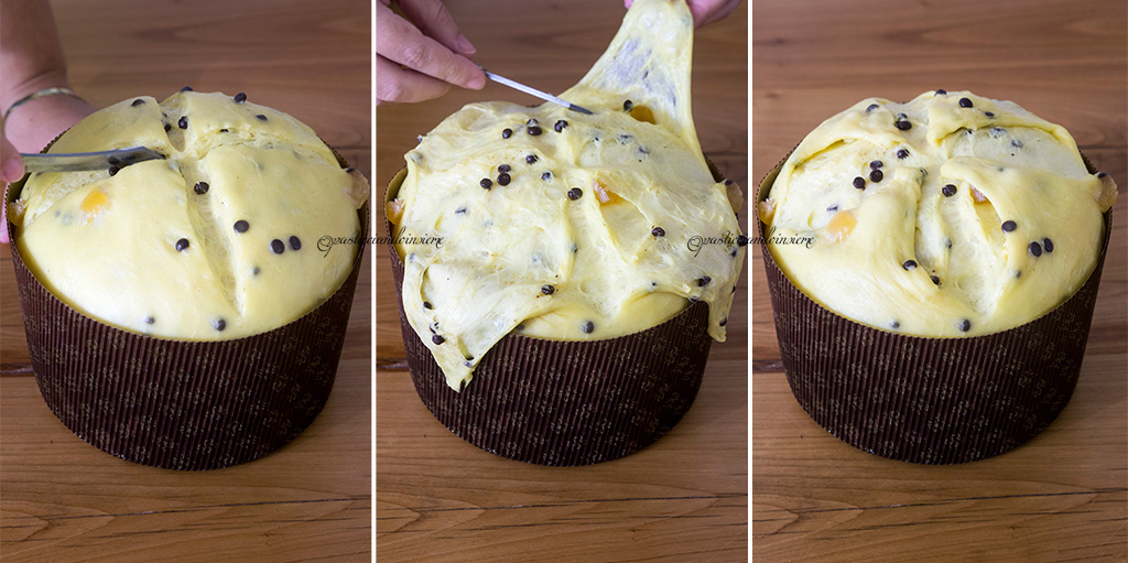 panettone-scarpatura-collage