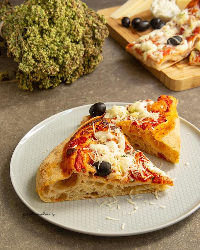 Ricetta Impasto Pizza A Lunga Lievitazione.Pizza In Teglia A Lunga Lievitazione Pasticciando Insieme